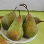Belle Angevine_©Les Croqueurs de pommes® de Touraine