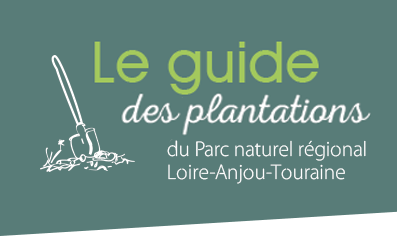 Le guide des plantations